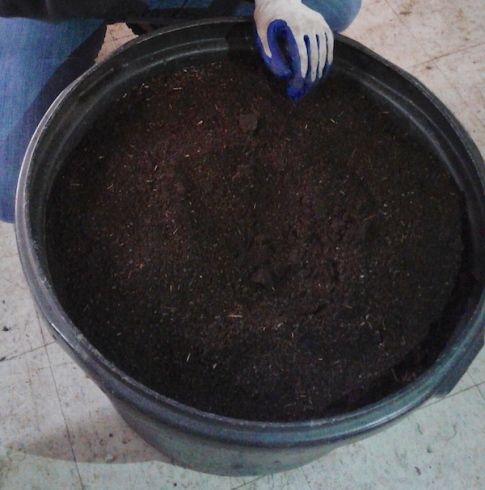 finished vermicompost