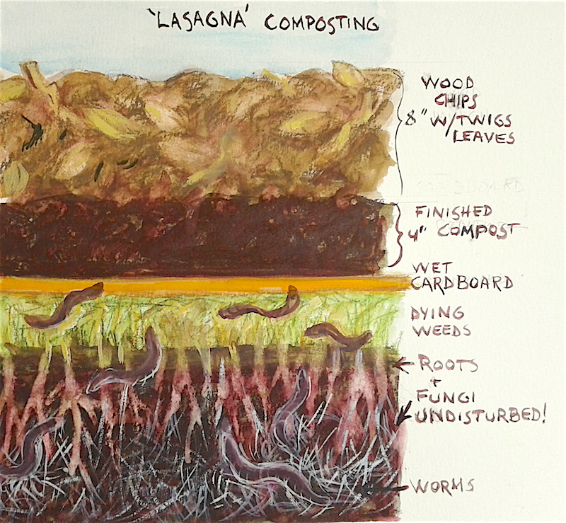 lasagna composting copy